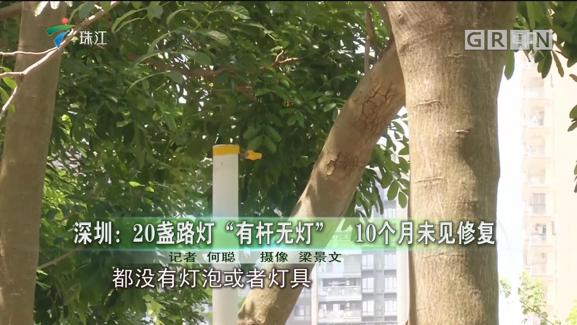 """深圳:20盏路灯""""有杆无灯"""" 10个月未见修复"""