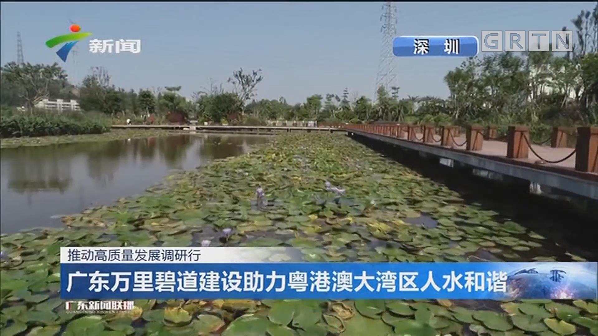 广东万里碧道建设助力粤港澳大湾区人水和谐