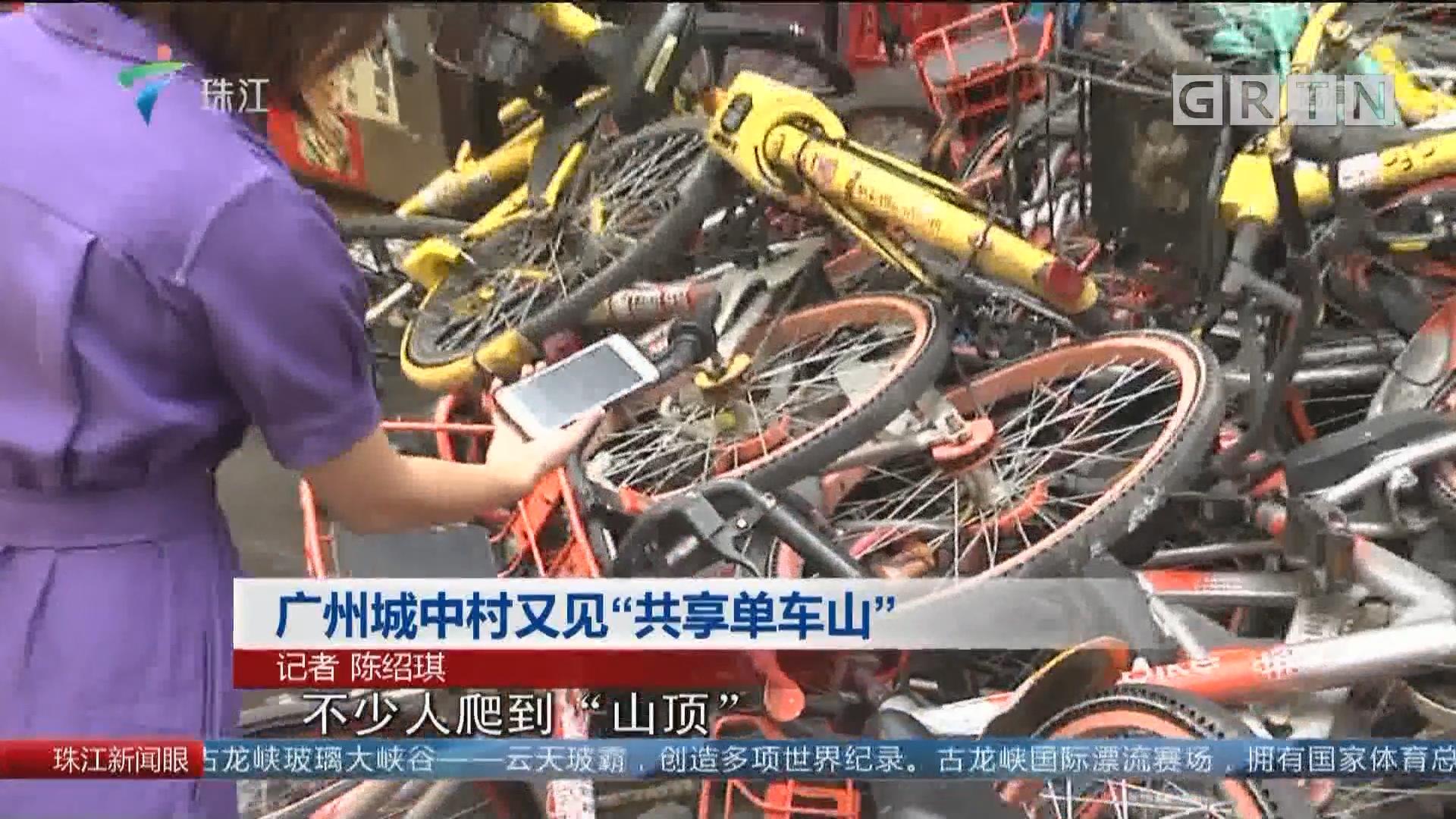 """广州城中村又见""""共享单车山"""""""