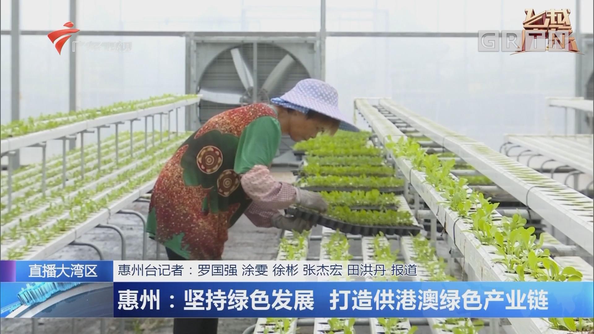 惠州:坚持绿色发展 打造供港澳绿色产业链