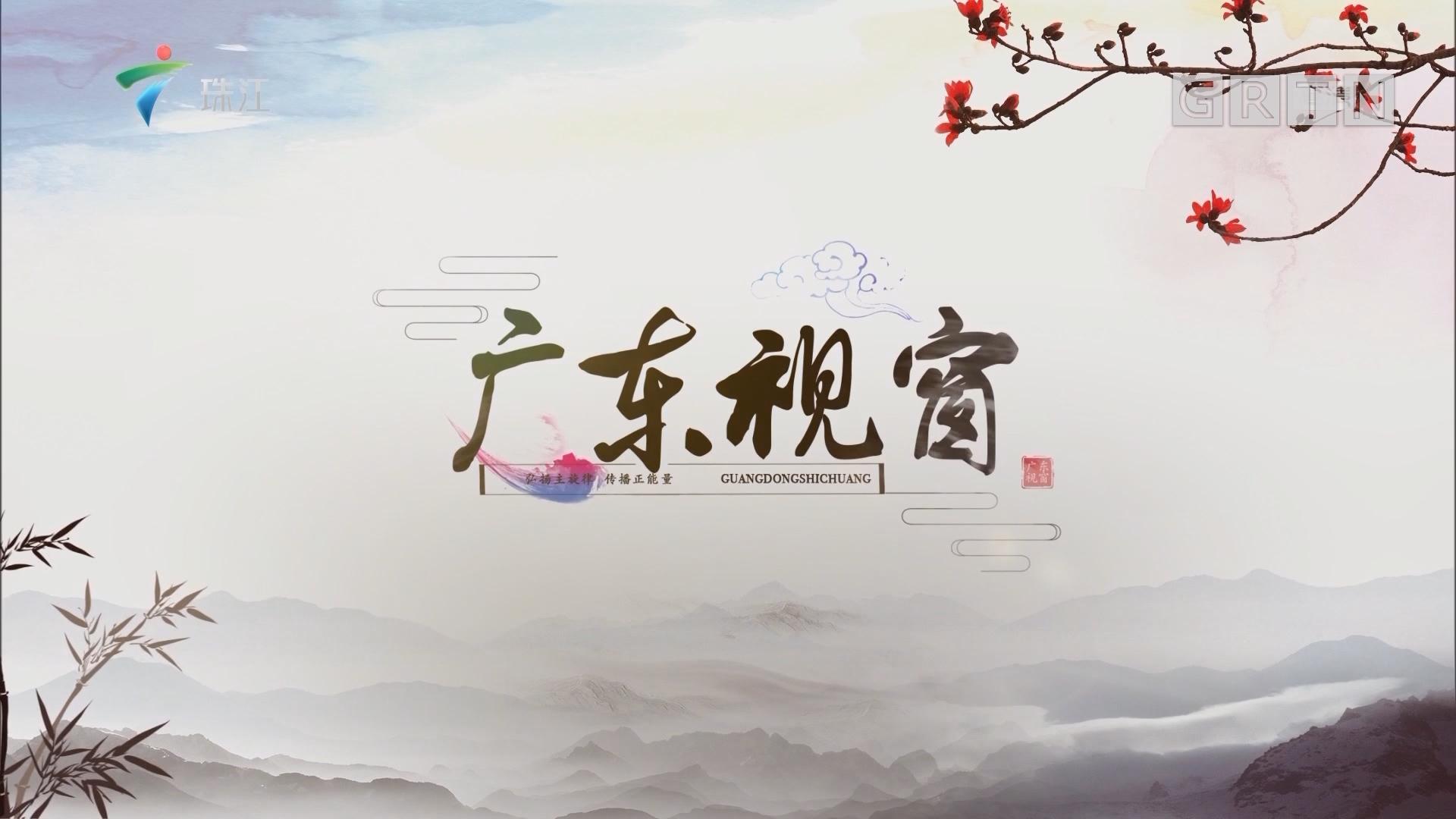 """[HD][2019-07-28]广东视窗:广东省税务局第四税务分局:专业化服务为大企业高质量发展""""助跑"""""""
