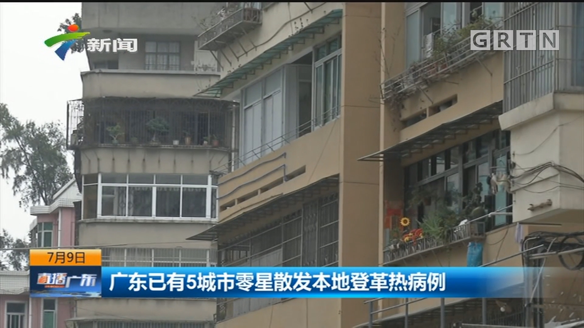 广东已有5城市零星散发本地登革热病例