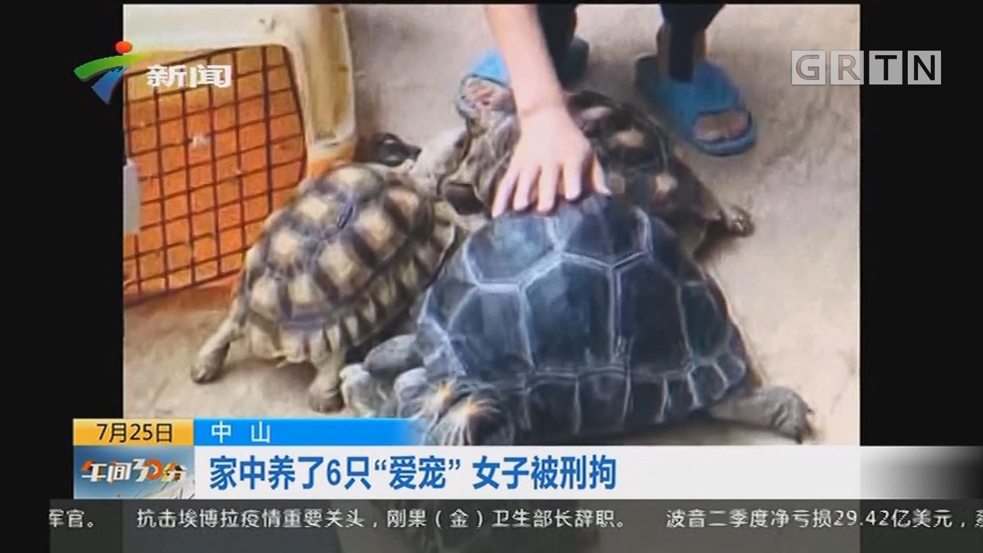 """中山:家中养了6只""""爱宠"""" 女子被刑拘"""