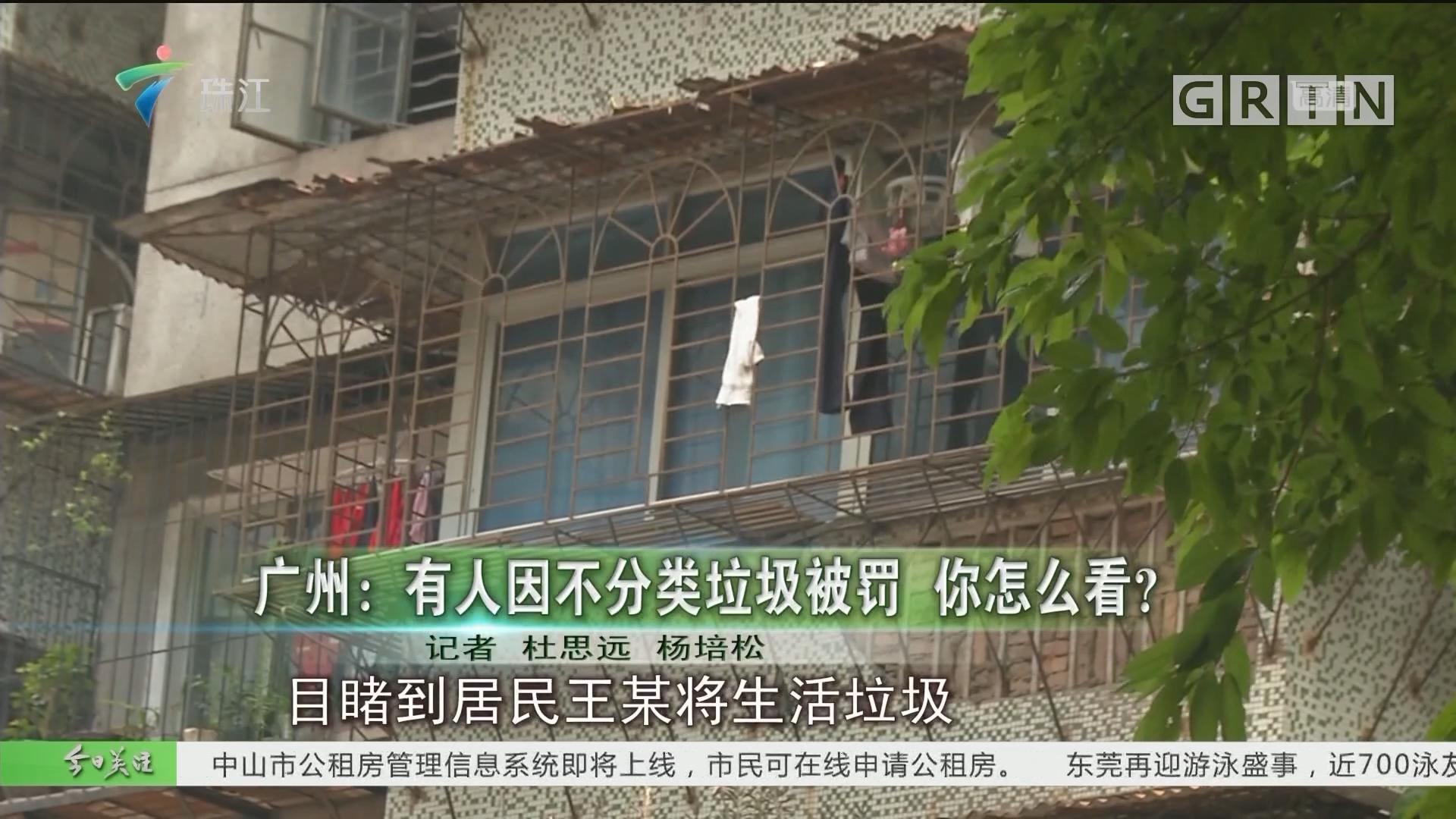 广州:有人因不分类垃圾被罚 你怎么看?