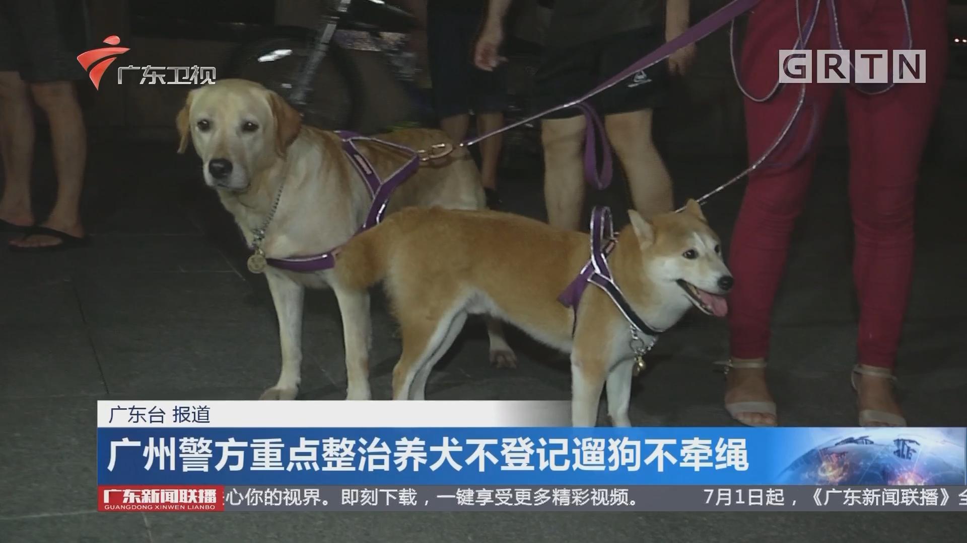 广州警方重点整治养犬不登记遛狗不牵绳