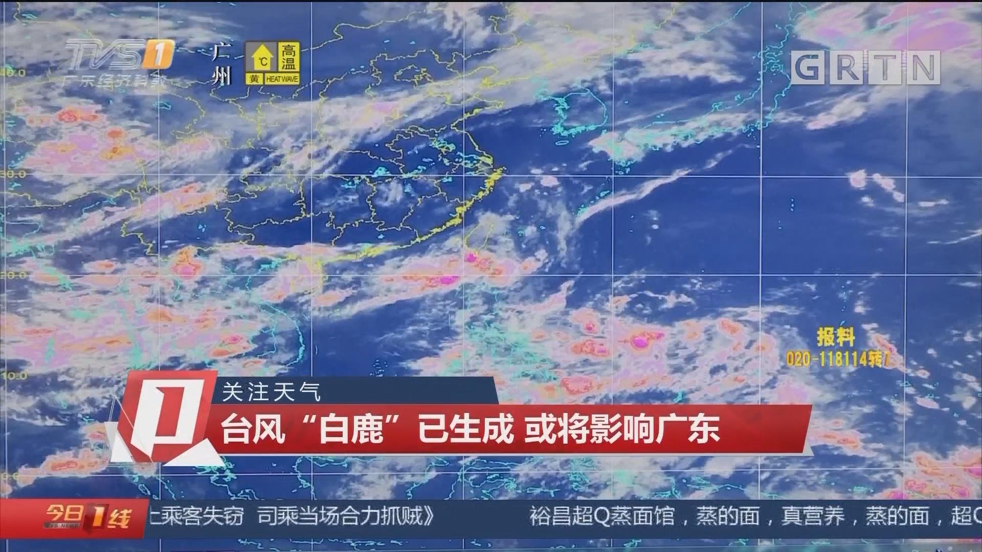 """關注天氣:臺風""""白鹿""""已生成 或將影響廣東"""