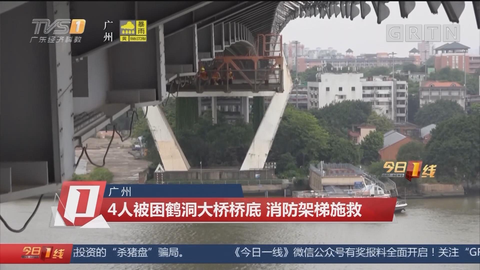 广州:4人被困鹤洞大桥桥底 消防架梯施救