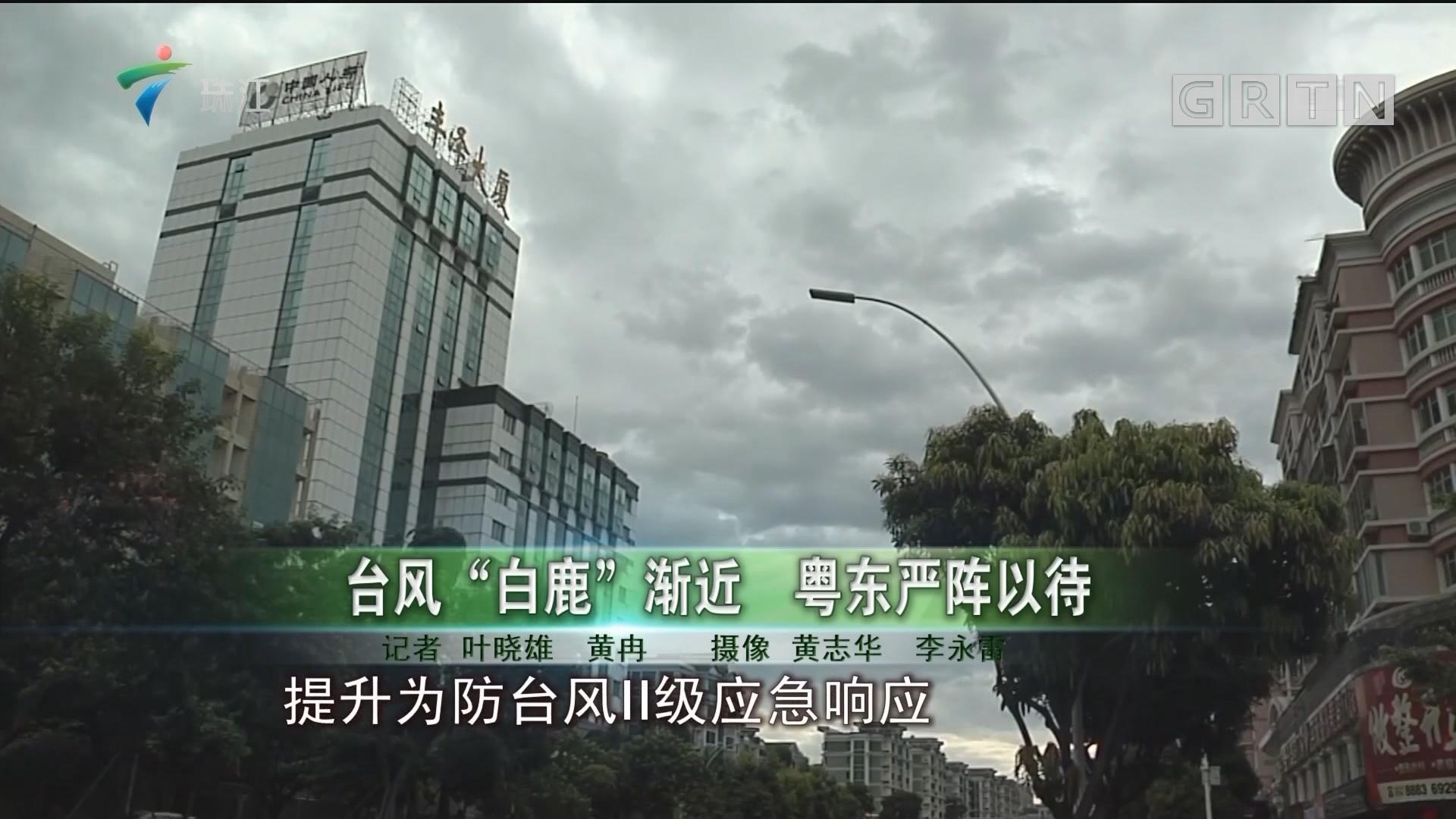 """台风""""白鹿""""渐近 粤东严阵以待"""