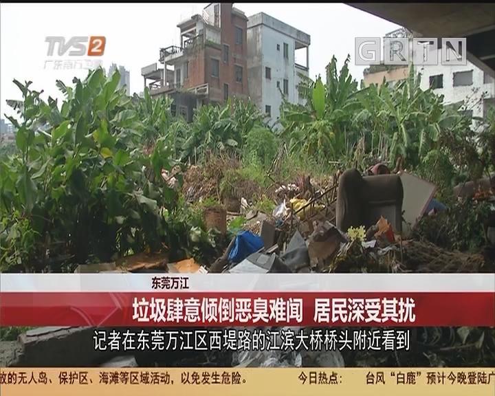 东莞万江:垃圾肆意倾倒恶臭难闻 居民深受其扰