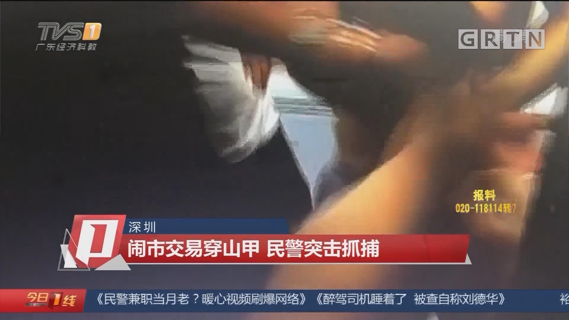 深圳:闹市交易穿山甲 民警突击抓捕