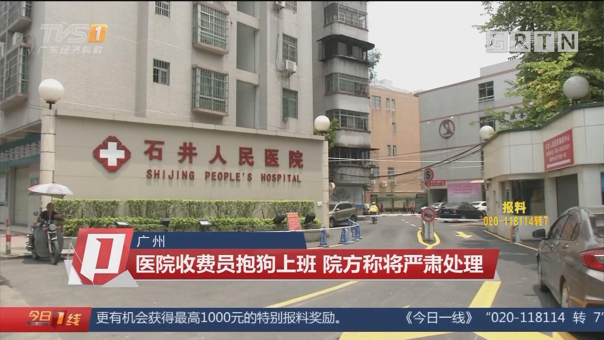 广州:医院收费员抱狗上班 院方称将严肃处理