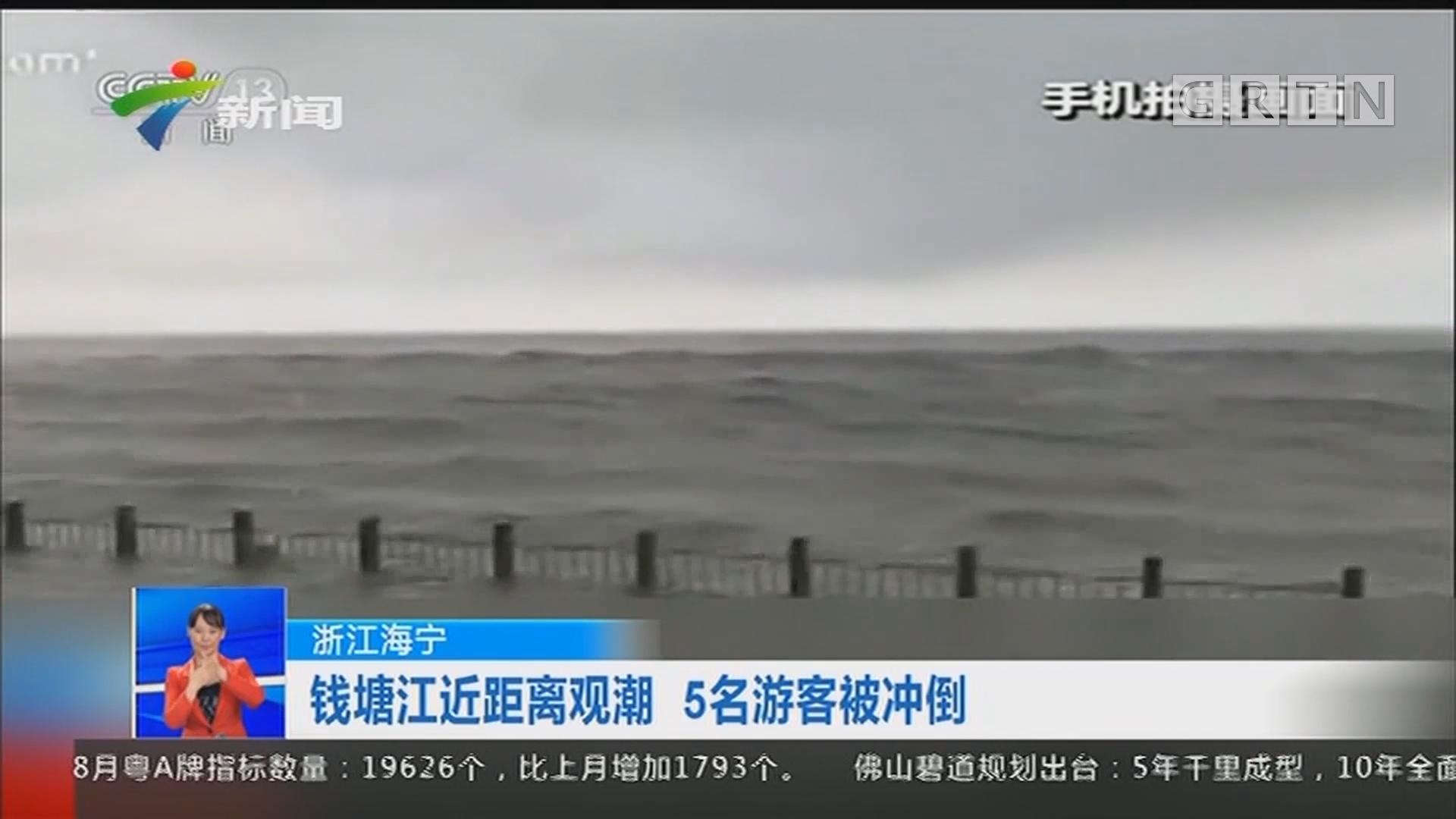 浙江海宁:钱塘江近距离观潮 5名游客被冲倒
