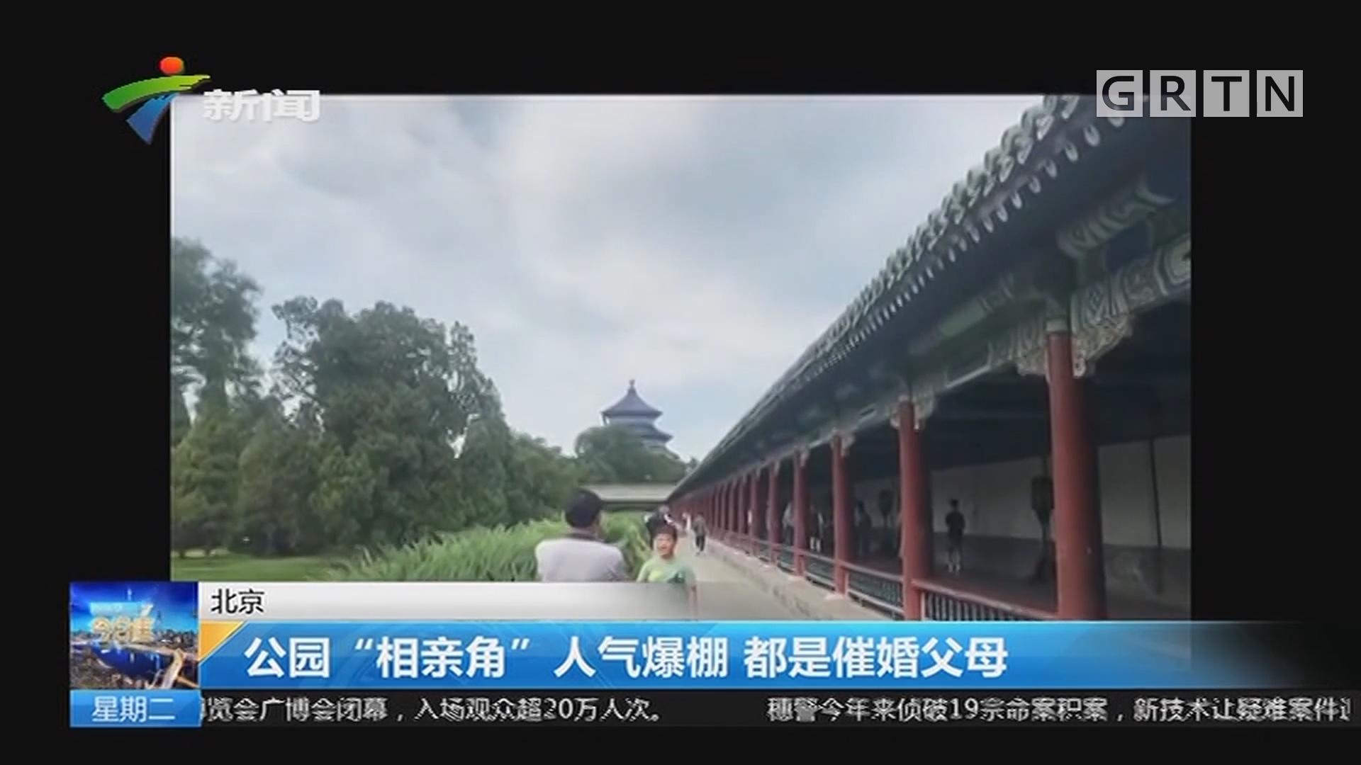 """北京:公园""""相亲角""""人气爆棚 都是催婚父母"""