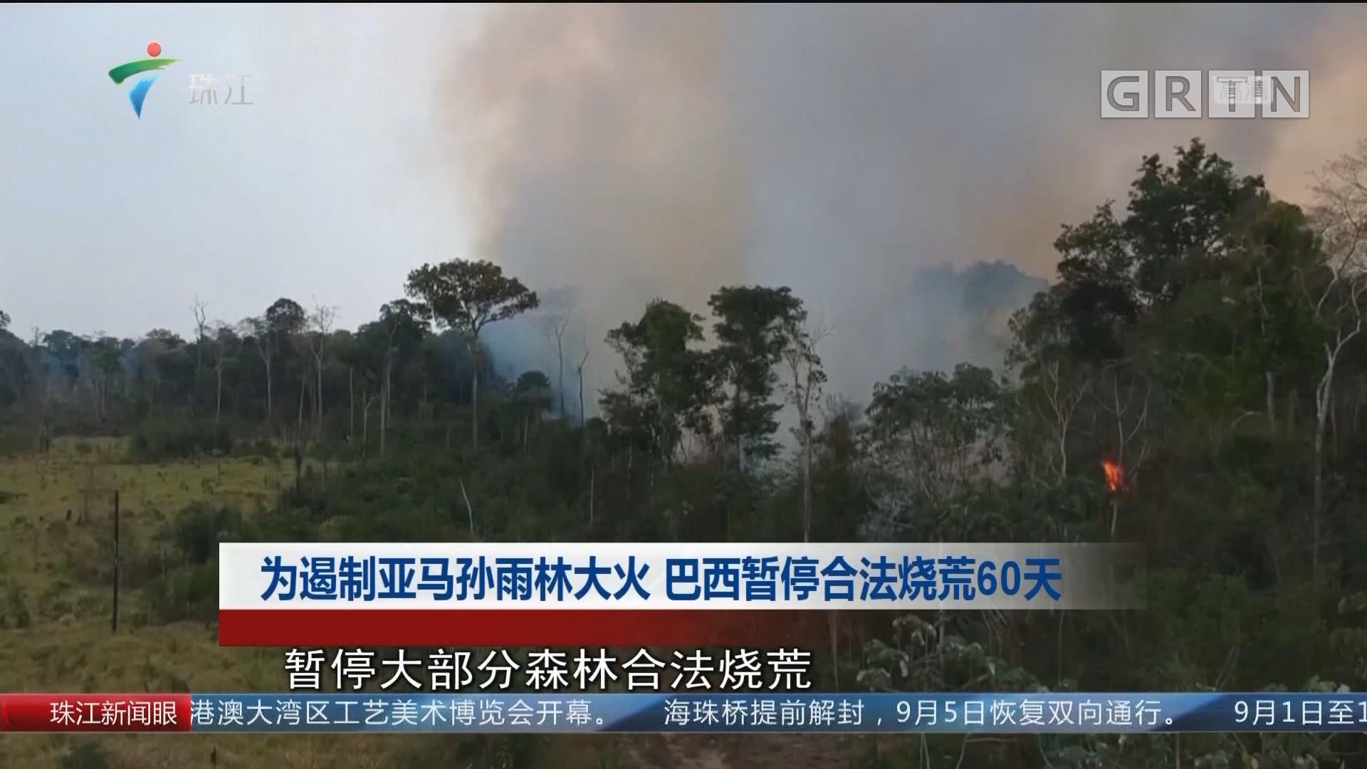 为遏制亚马孙雨林大火 巴西暂停合法烧荒60天