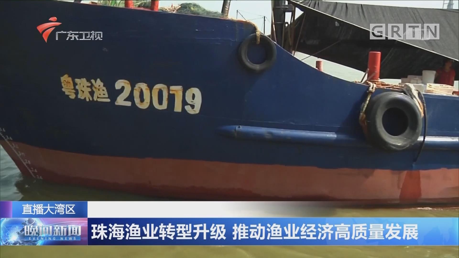 """""""新时代新渔港"""" 珠海渔业转型升级 推动渔业经济高质量发展"""