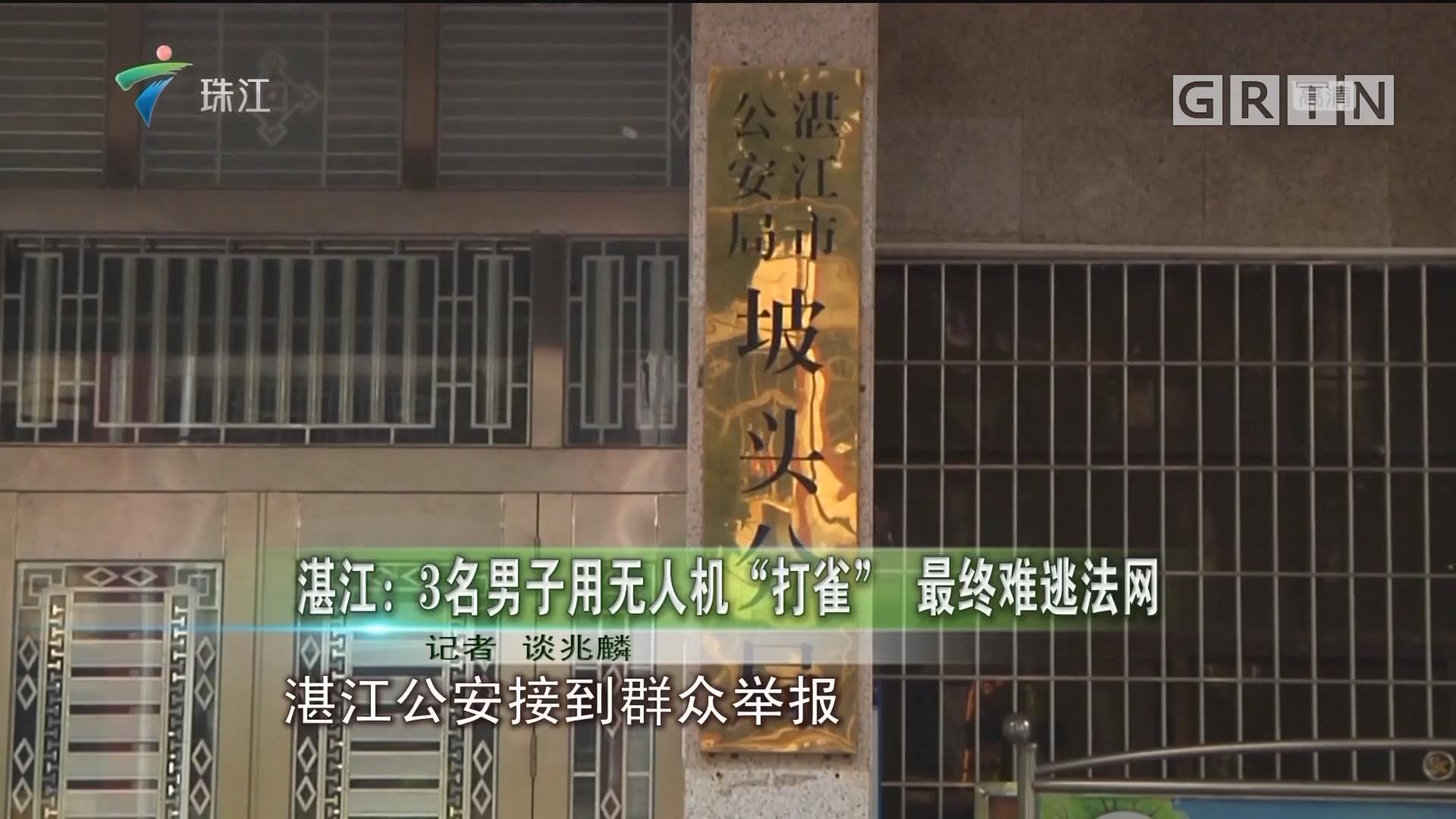 """湛江:3名男子用无人机""""打雀"""" 最终难逃法网"""
