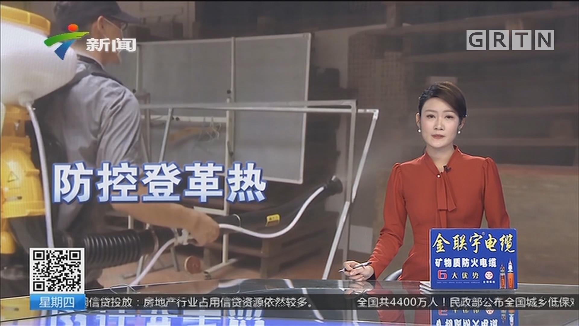 广东:防控登革热 灭蚊是关键