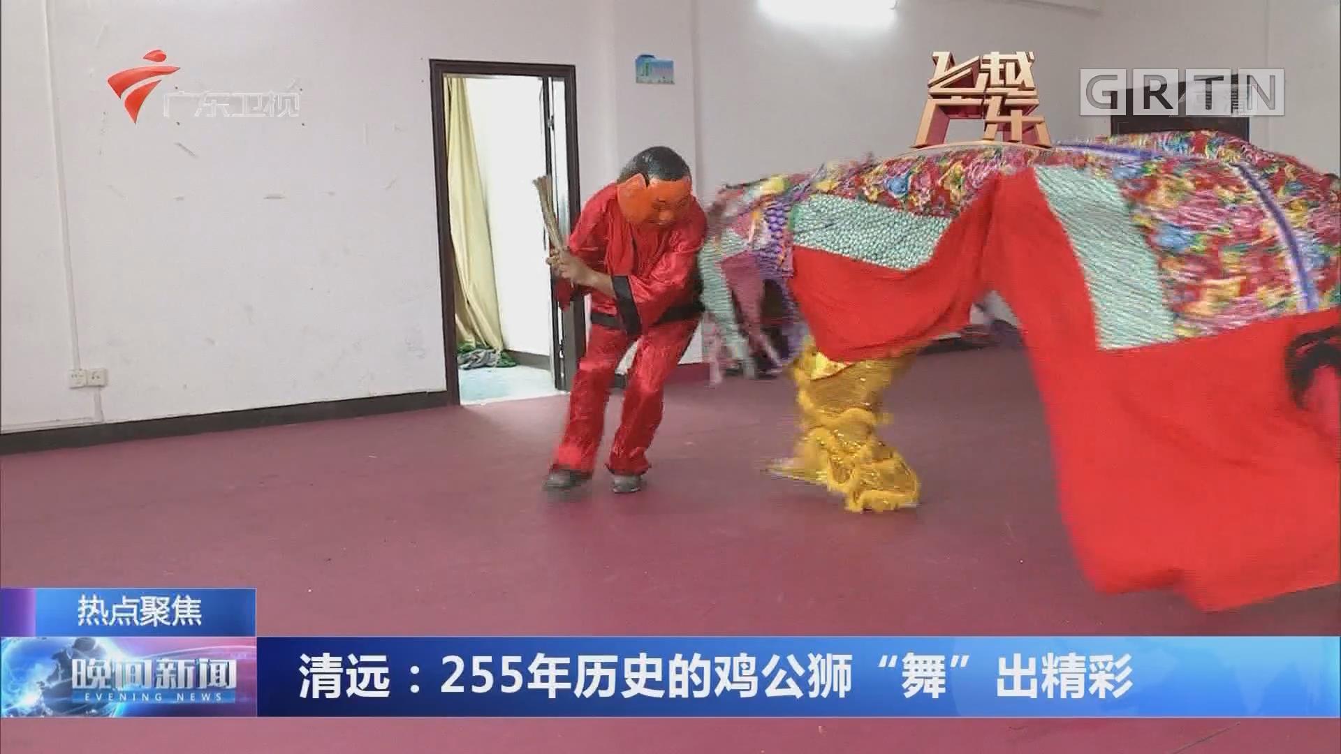 """清远:255年历史的鸡公狮""""舞""""出精彩"""
