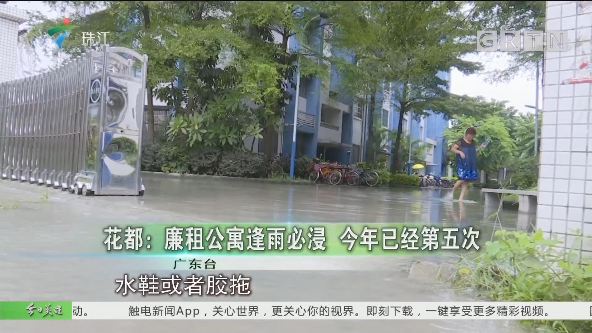 花都:廉租公寓逢雨必浸 今年已经第五次