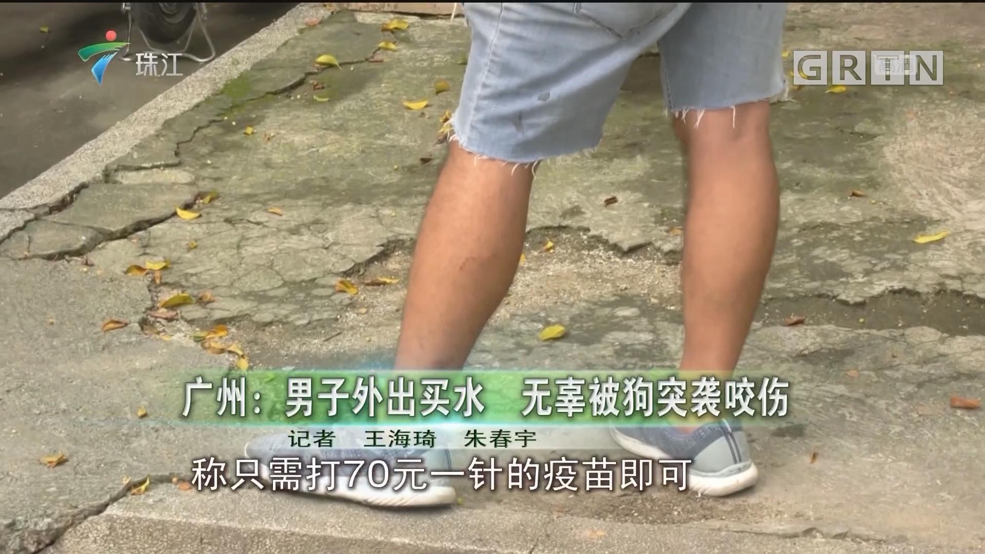 广州:男子外出买水 无辜被狗突袭咬伤