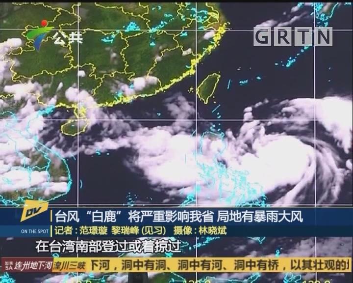 """台风""""白鹿""""将严重影响我省 局地有暴雨大风"""