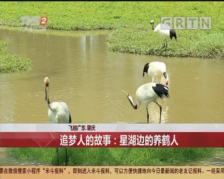 飞越广东·肇庆 追梦人的故事:星湖边的养鹤人