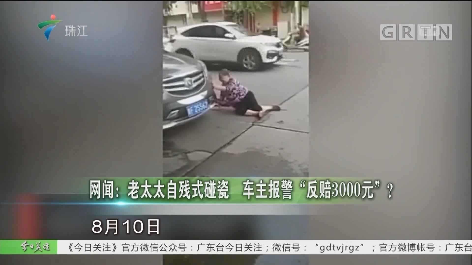 """网闻:老太太自残式碰瓷 车主报警""""反赔3000元""""?"""