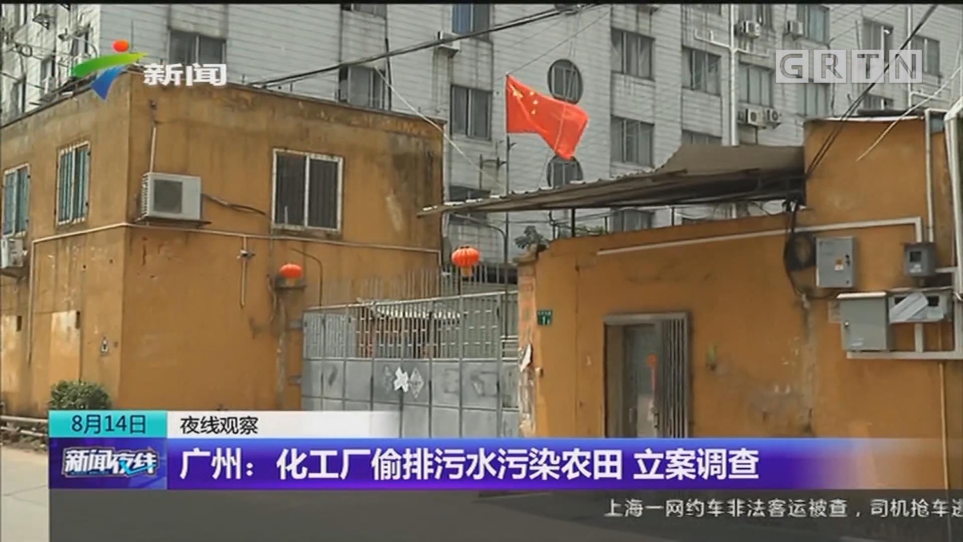 广州:化工厂偷排污水污染农田 立案调查