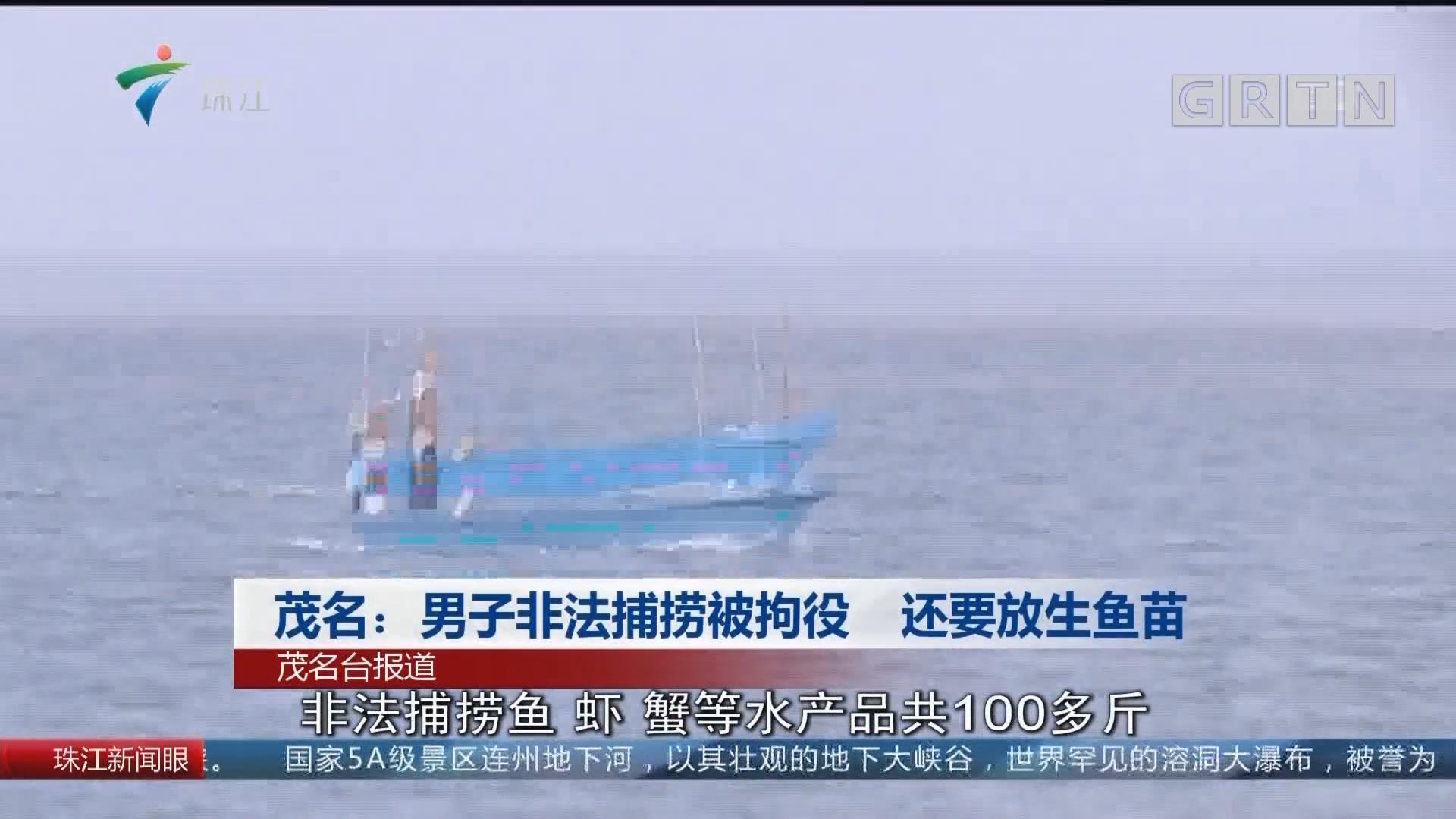 茂名:男子非法捕捞被拘役 还要放生鱼苗