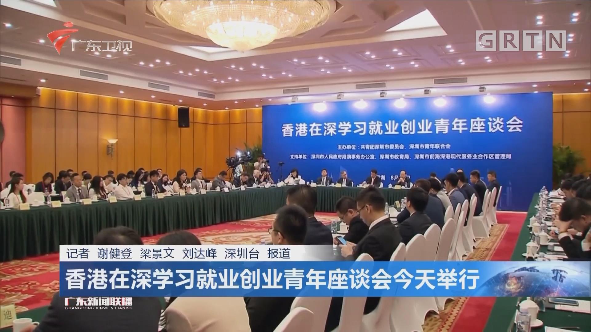 香港在深学习就业创业青年座谈会今天举行