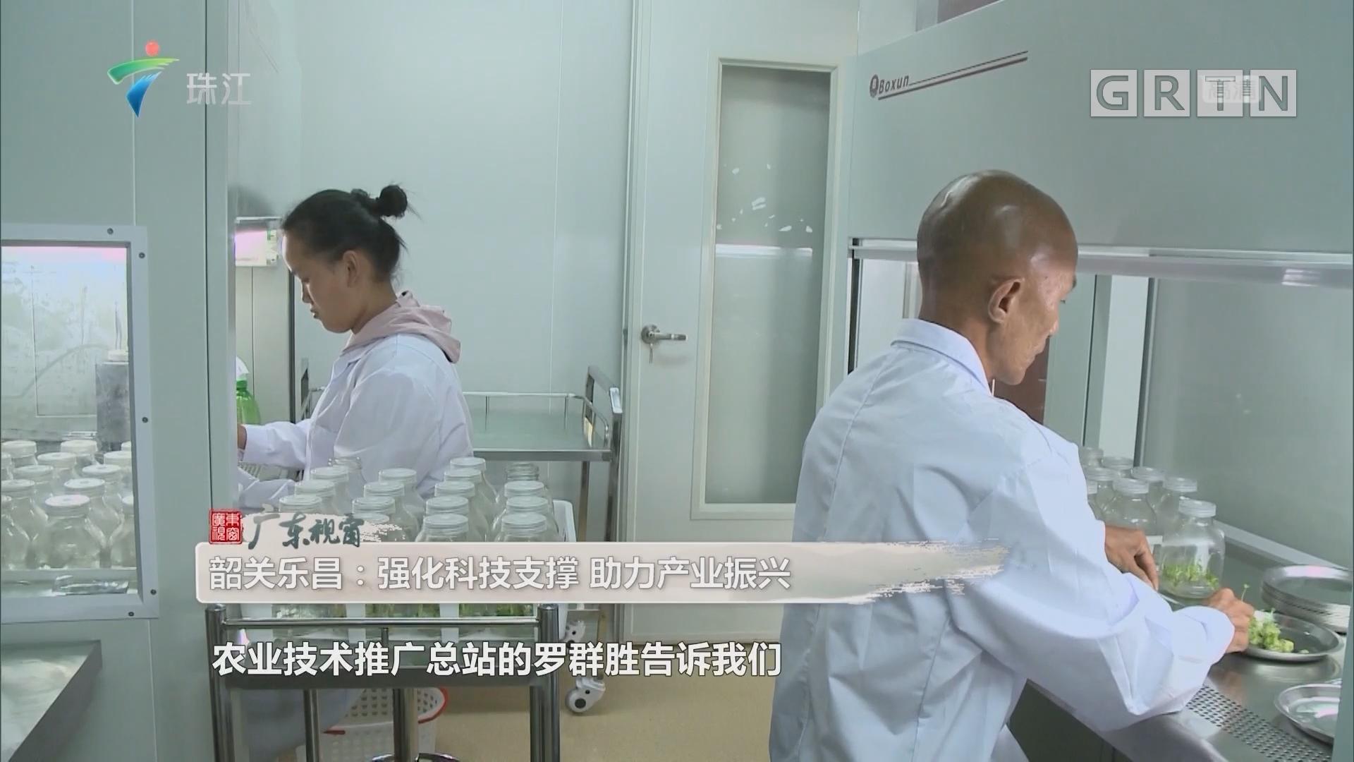 [HD][2019-08-03]广东视窗:韶关乐昌:强化科技支撑 助力产业振兴