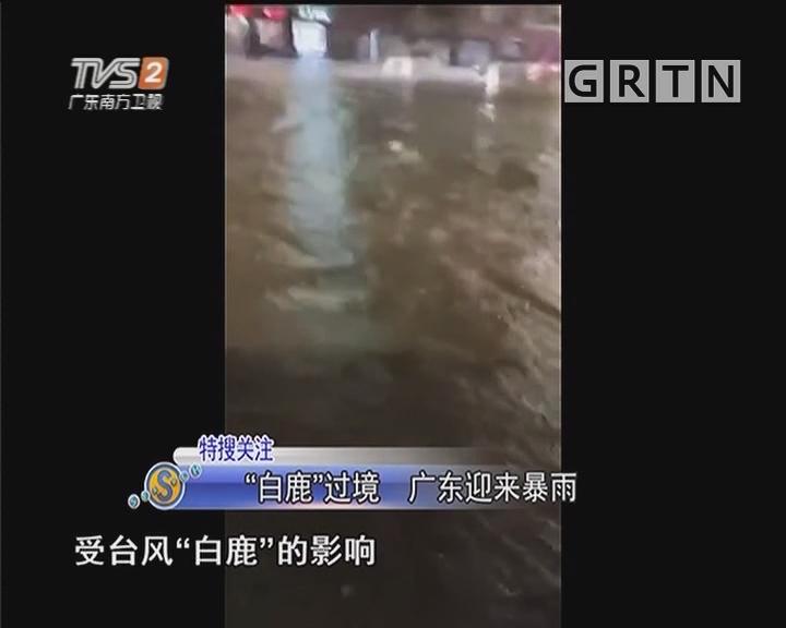 """""""白鹿""""过境 广东迎来暴雨"""