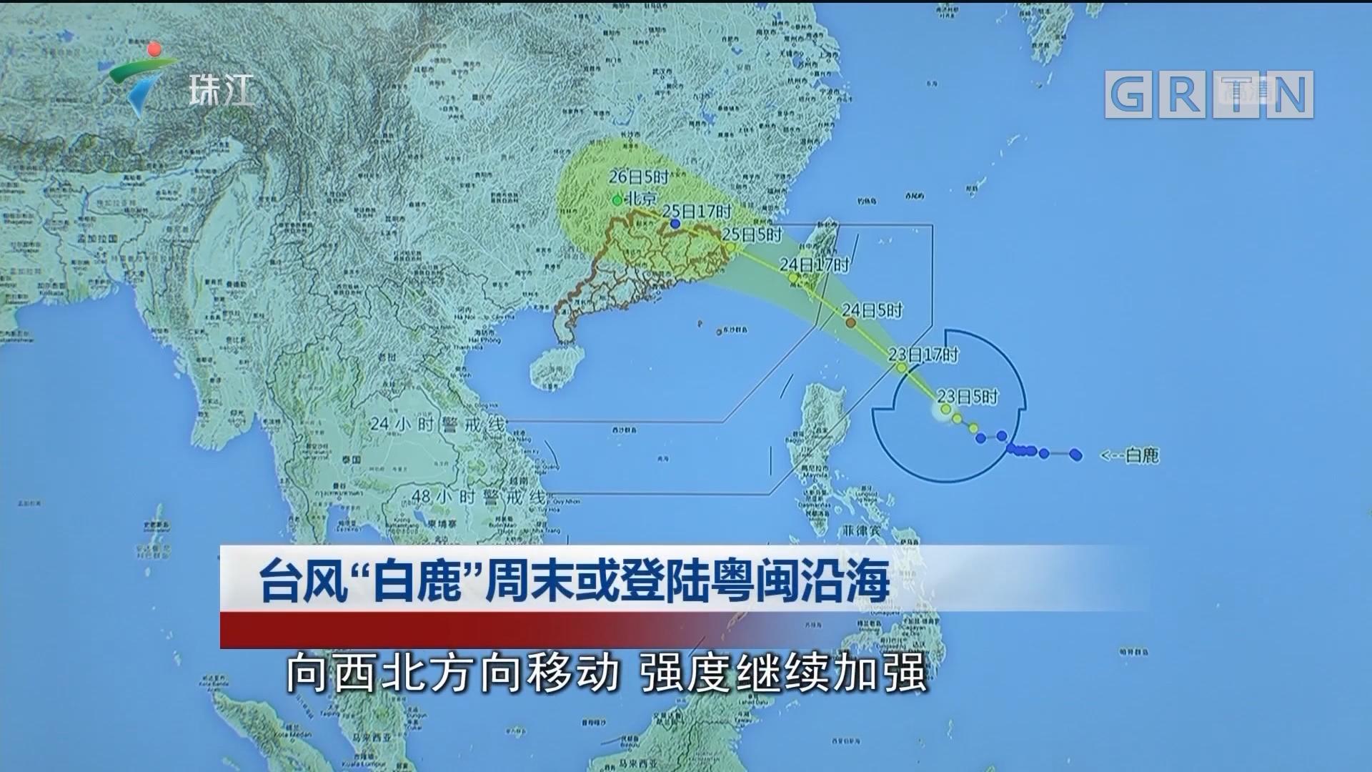"""台风""""白鹿""""周末或登陆粤闽沿海"""