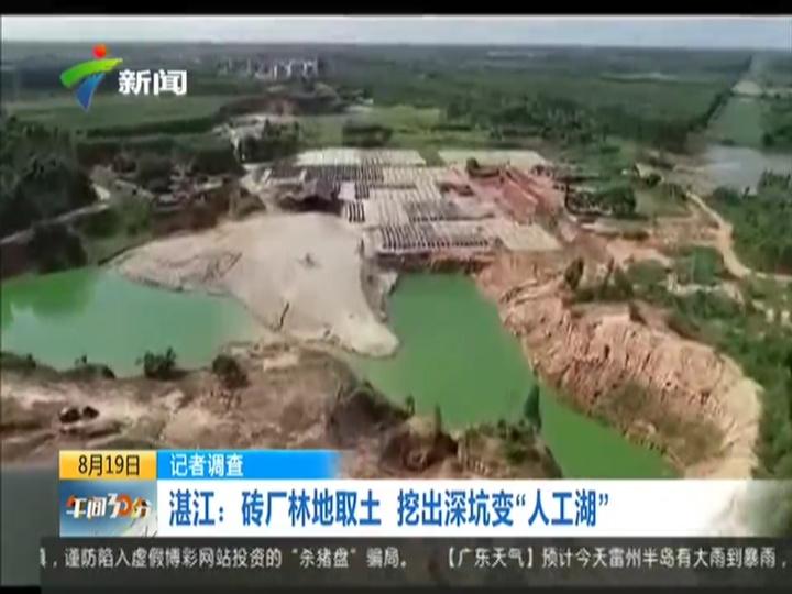"""湛江雷州:砖厂林地取土 挖出深坑变""""人工湖"""""""