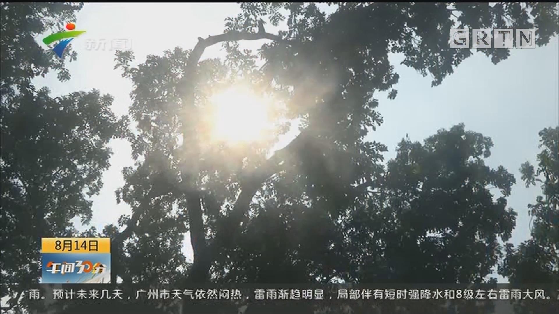 广州:高温天气超长待机 解暑神器销量创新高