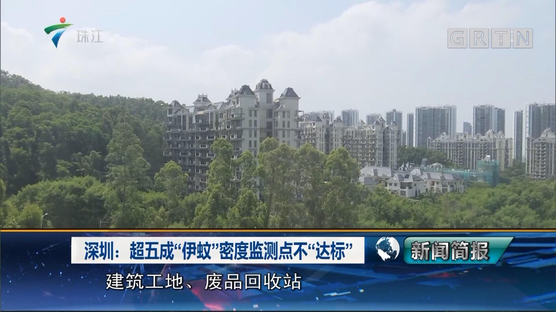 """深圳:超五成""""伊蚊""""密度监测点不""""达标"""""""