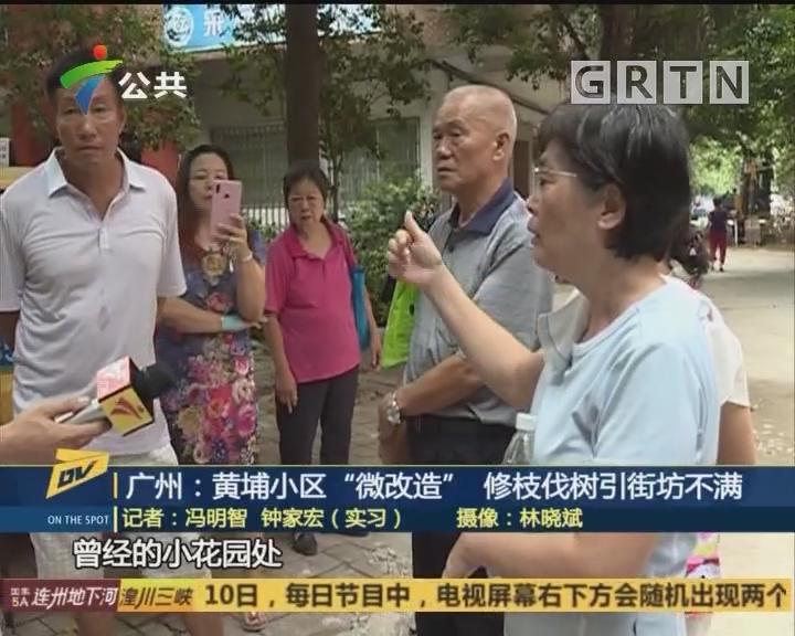 """广州:黄埔小区""""微改造"""" 修枝伐树引街坊不满"""