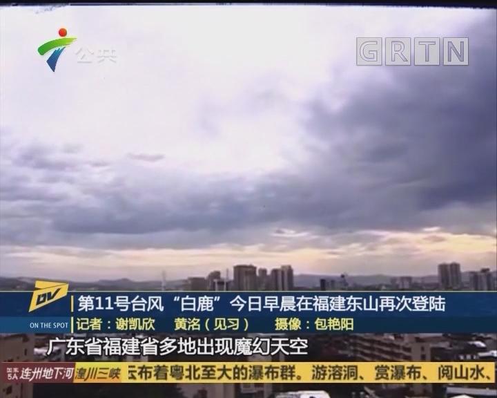 """第11号台风""""白鹿""""今日早晨在福建东山再次登陆"""