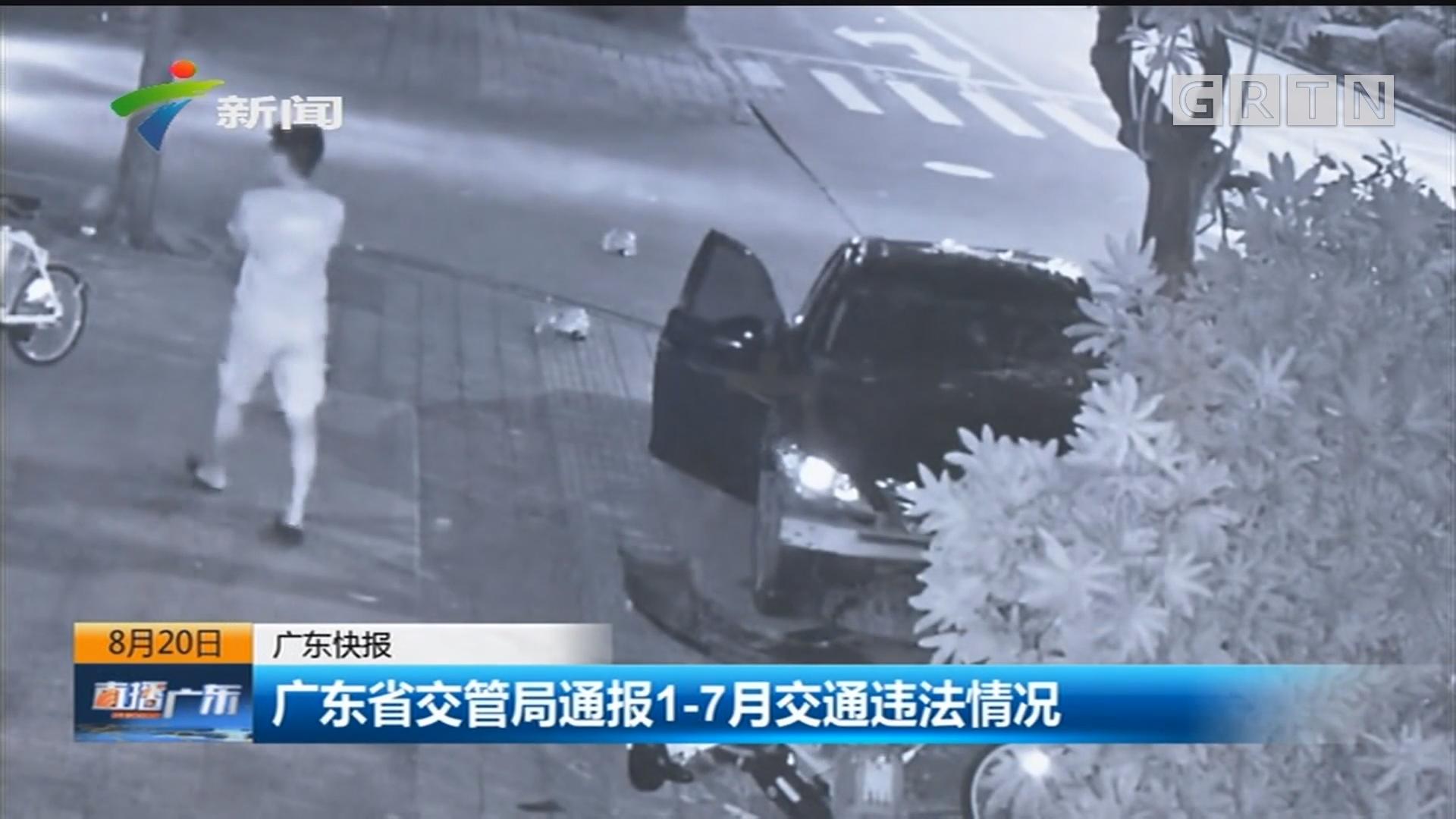 广东省交管局通报1-7月交通违法情况