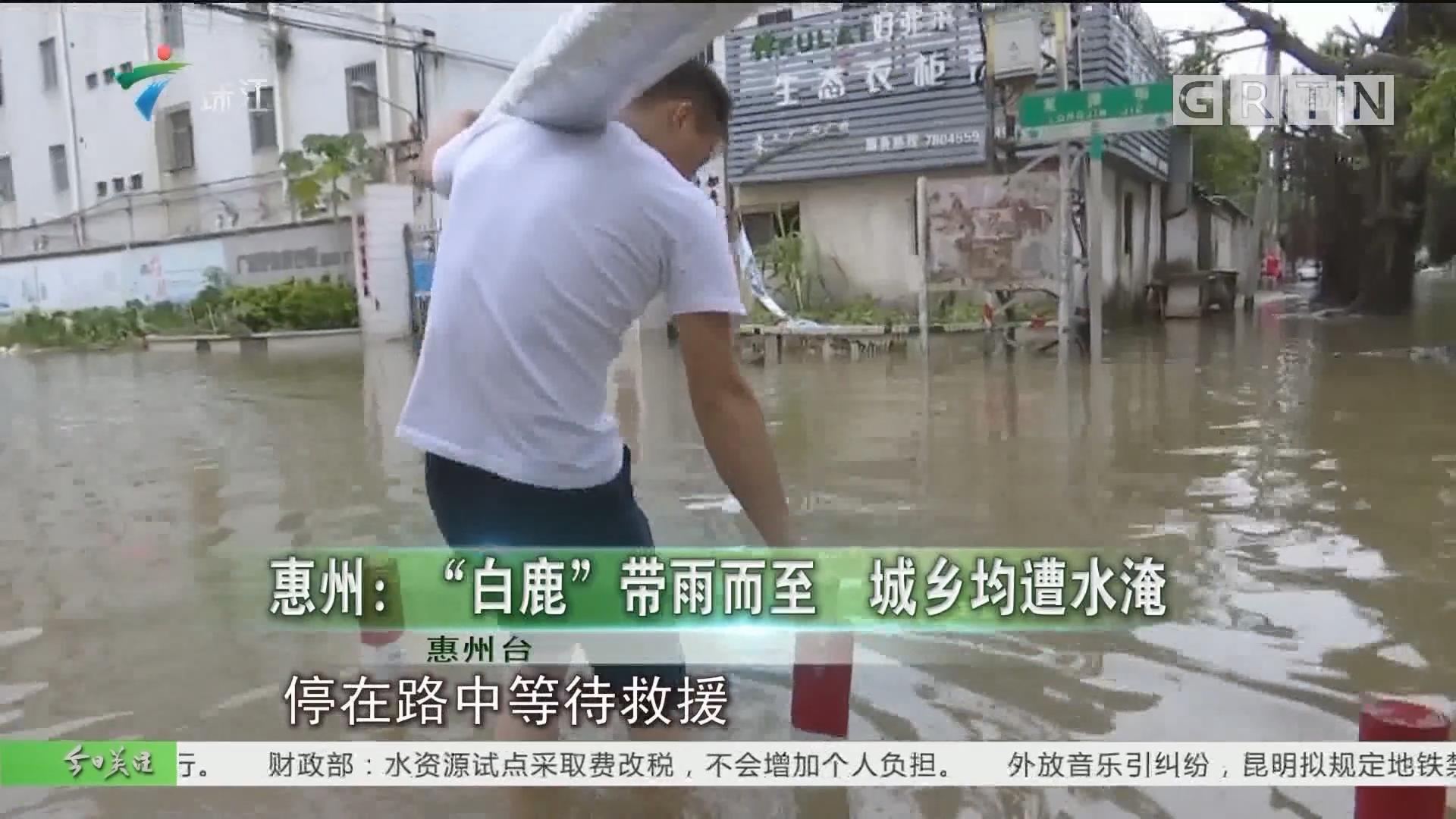 """惠州:""""白鹿""""带雨而至 城乡均遭水淹"""