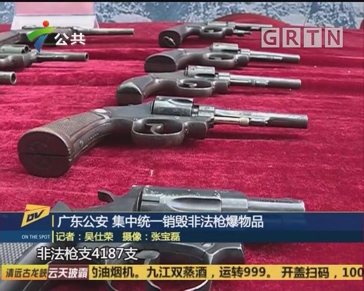 广东公安 集中统一销毁非法枪爆物品