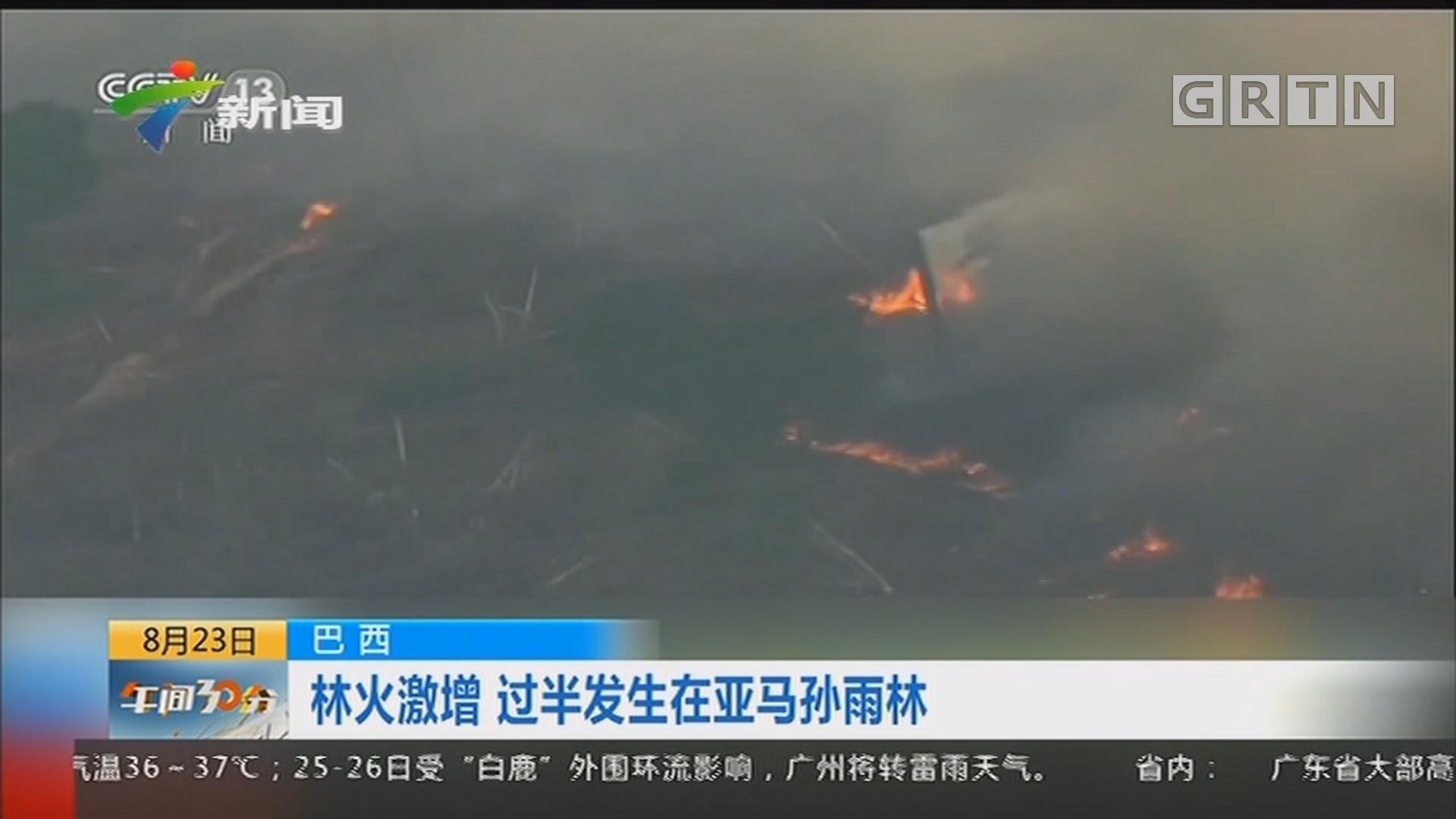 巴西:林火激增 过半发生在亚马孙雨林
