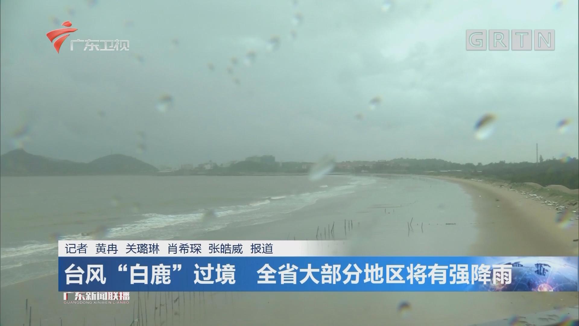 """台风""""白鹿""""过境 全省大部分地区将有强降雨"""