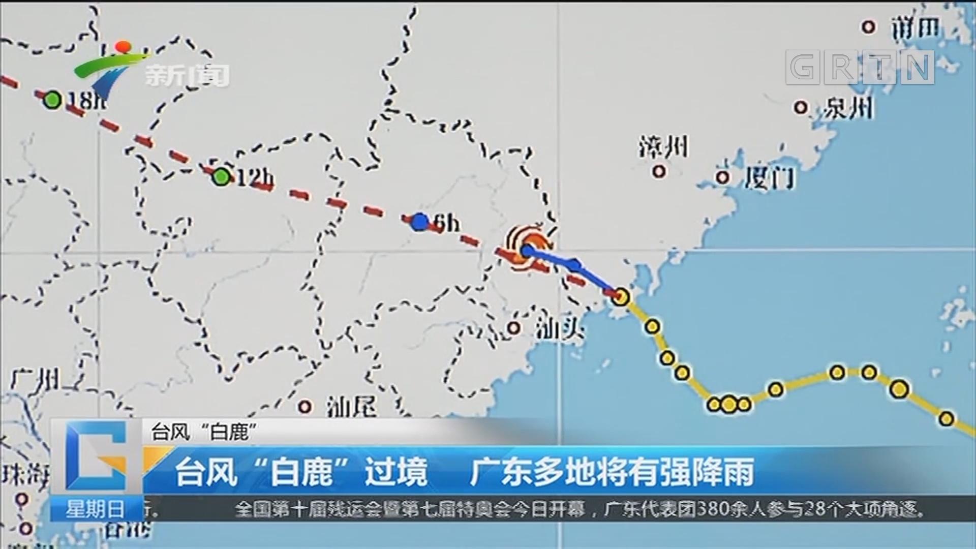 """台风""""白鹿""""过境 广东多地将有强降雨"""