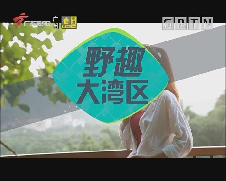 [2019-08-15]乐享新生活-野趣大湾区