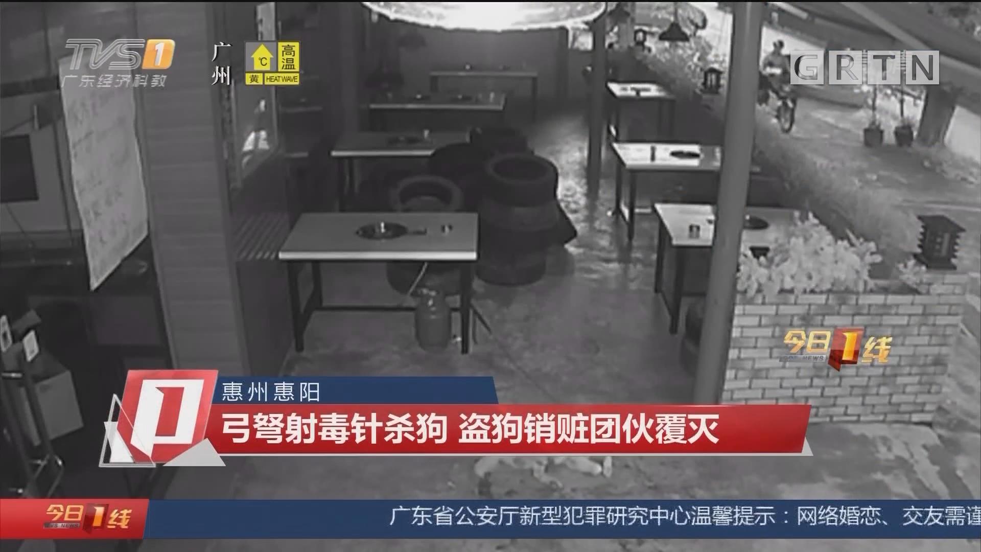 惠州惠阳:弓弩射毒针杀狗 盗狗销赃团伙覆灭
