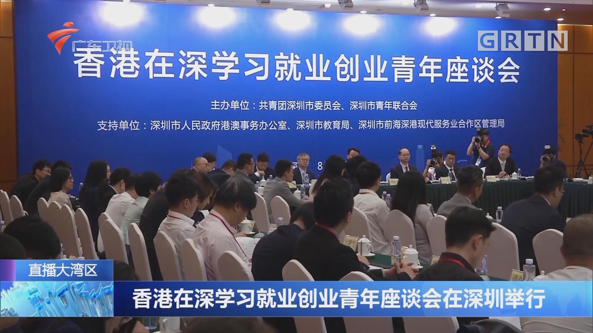 香港在深学习就业创业青年座谈会在深圳举行