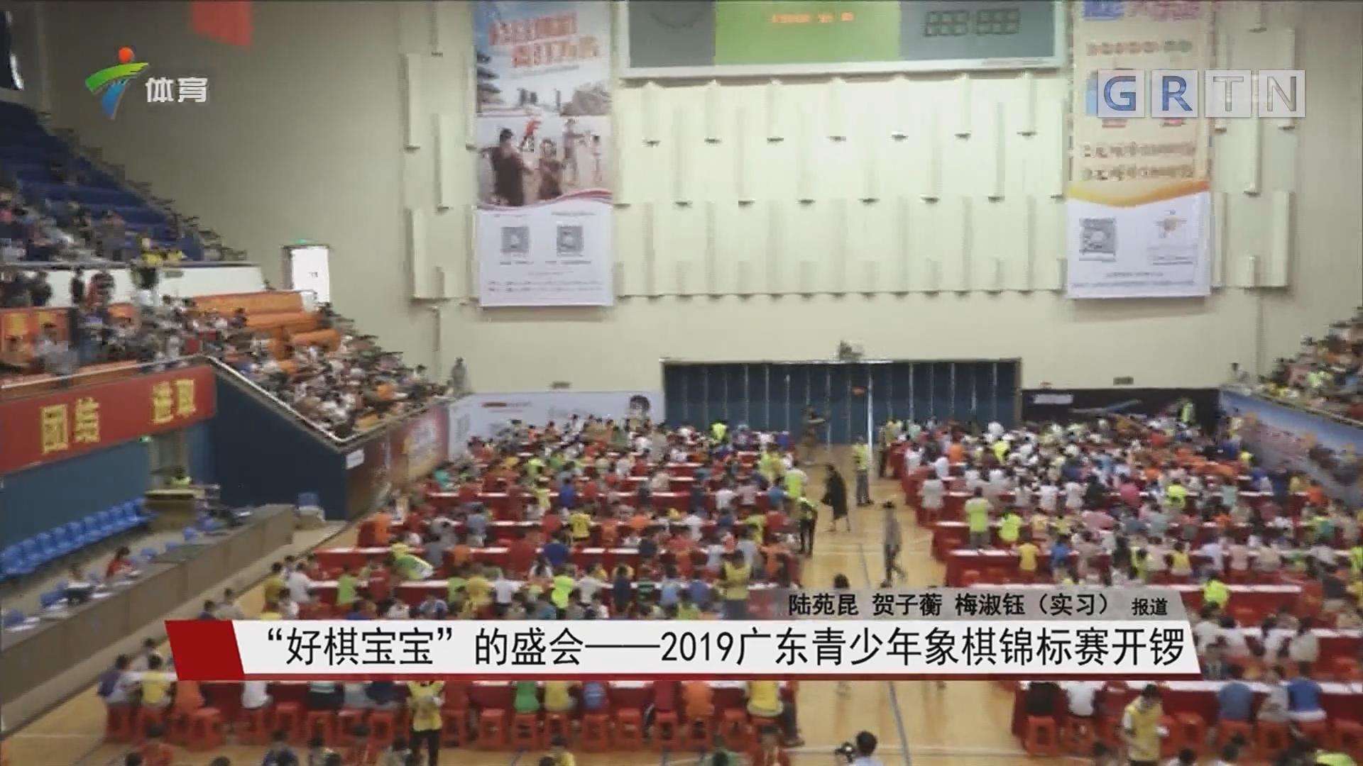 """""""好棋宝宝""""的盛会——2019广东青少年象棋锦标赛开锣"""