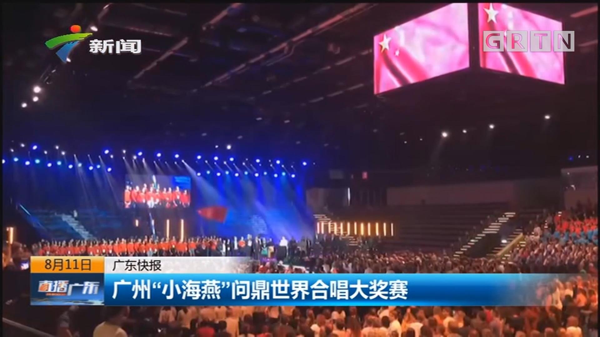 """广州""""小海燕""""问鼎世界合唱大奖赛"""