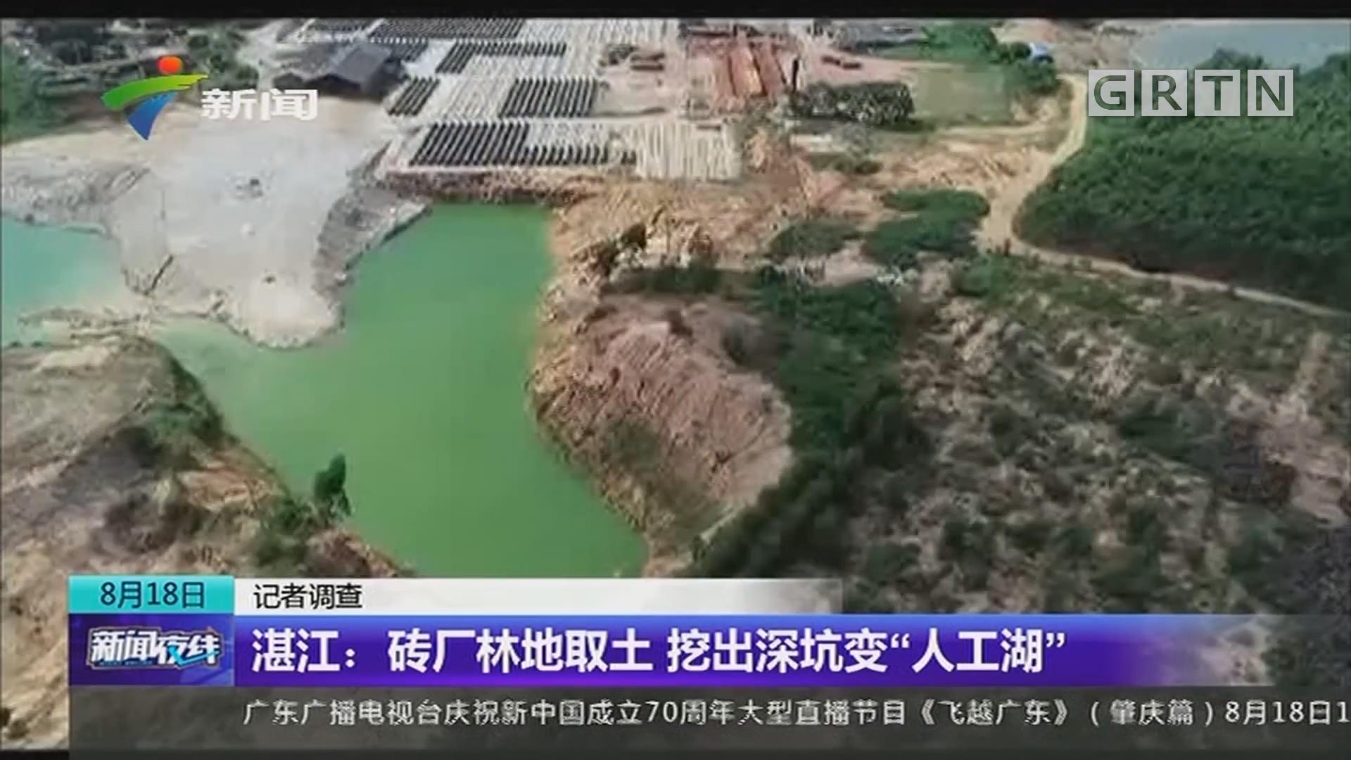"""记者调查 湛江:砖厂林地取土 挖出深坑变""""人工湖"""""""